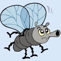 Lengua de signos. Aprende los insectos