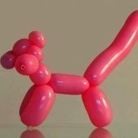 Aprende a hacer la Pantera Rosa con globos. Globoflexia