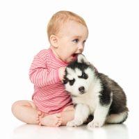 Risa contagiosa de un bebé jugando con su perro