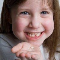 Quién se lleva los dientes de leche de los niños