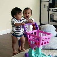 Pelea entre dos hermanas gemelas por un juguete