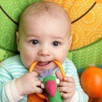 El desarrollo de los sentidos de los bebés