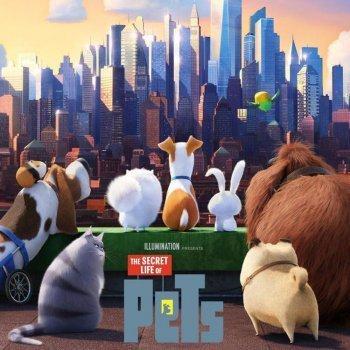 Mascotas. Película de dibujos con animales para niños