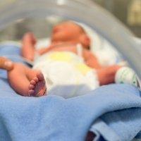 Bebés adictos a las drogas desde el embarazo