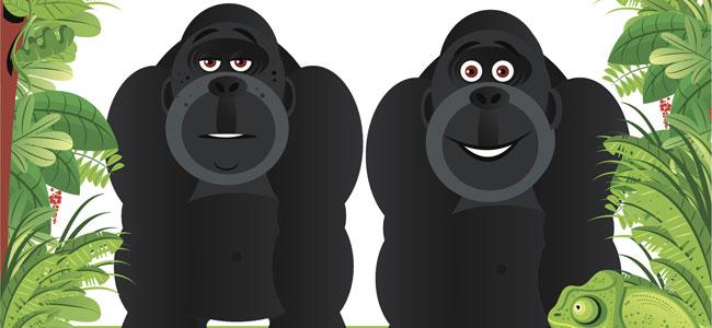 Los gorila desobedientes, poesía para niños con valores