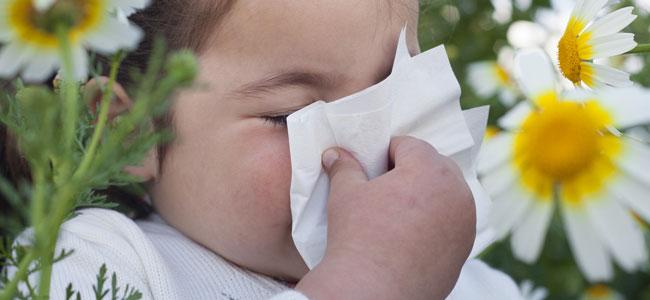 Cómo diferenciar rinitis alérgica de los resfriados en los niños