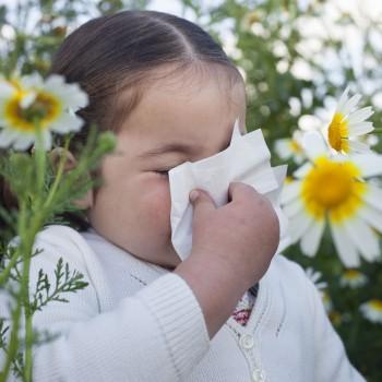 Diferenciar la rinitis alérgica de un resfriado