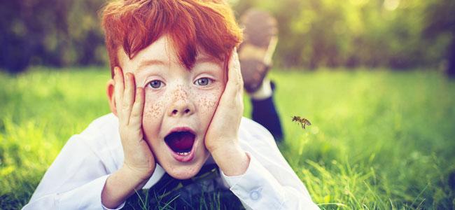 Como evitar que a tu hijo le pique una avispa