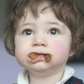 Qué hacer cuando un niño no quiere masticar