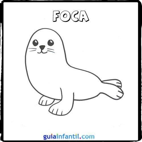 Dibujo de una foca para pintar con los niños