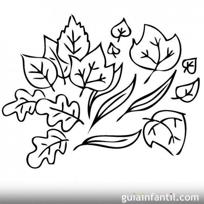 Dibujo de hojas en otoño para colorear
