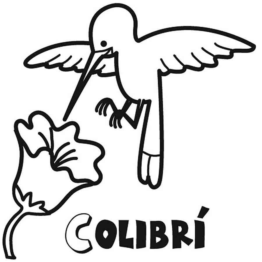Dibujo para niños de colibrí