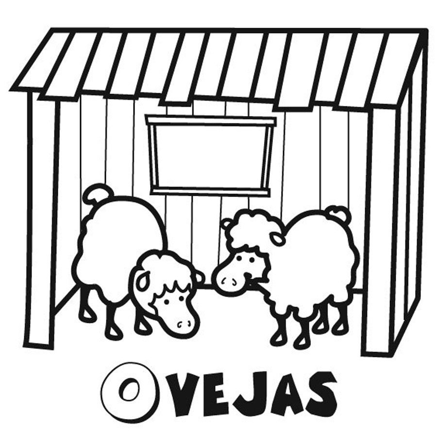 Dibujo de ovejas para colorear