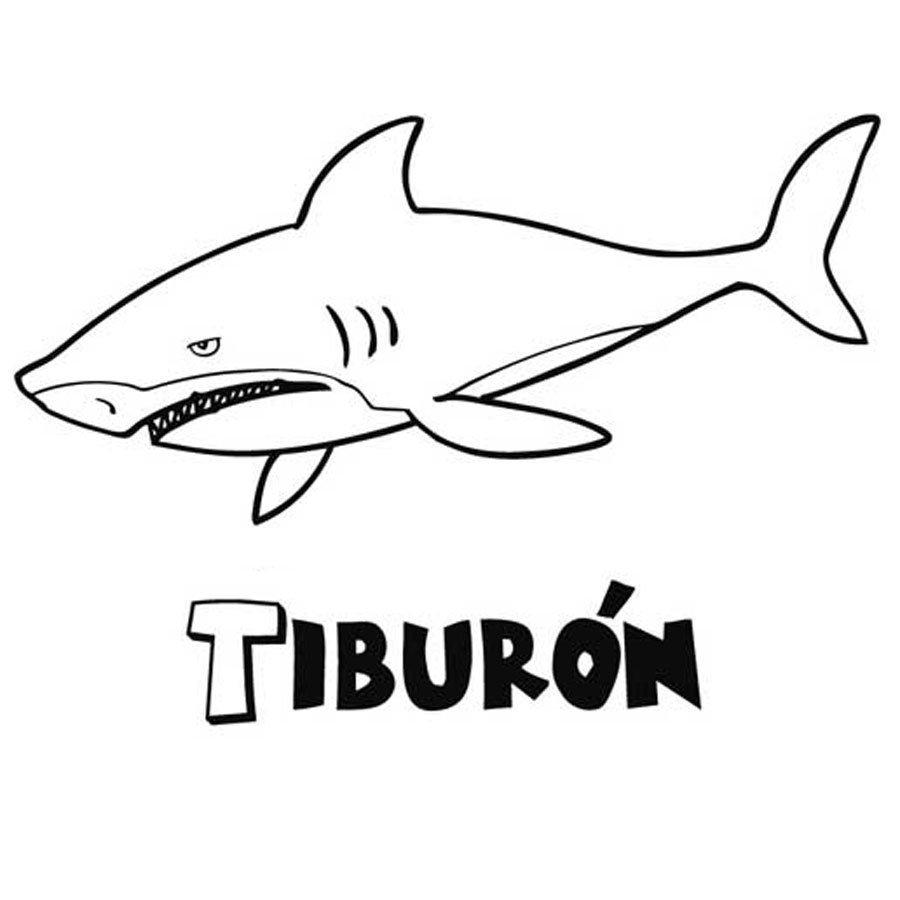 Atractivo Tiburón Para Colorear Colección - Ideas Para Colorear ...