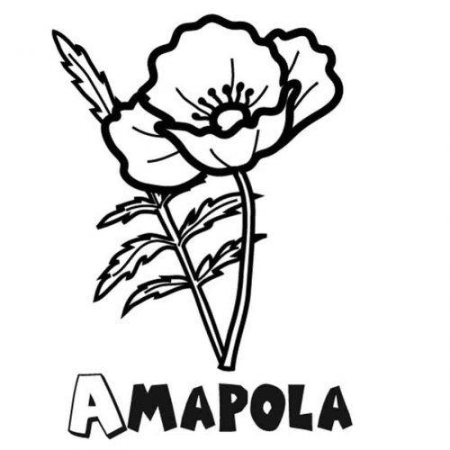Dibujo para imprimir y colorear de amapolas  Dibujos para
