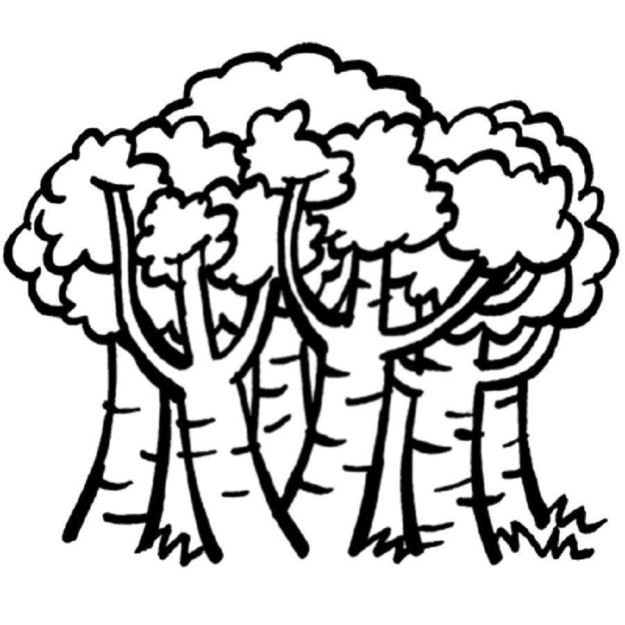 Dibujo para imprimir y pintar de un bosque