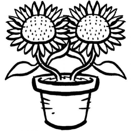 Dibujo para imprimir y pintar de girasoles for Plantas ornamentales para colorear