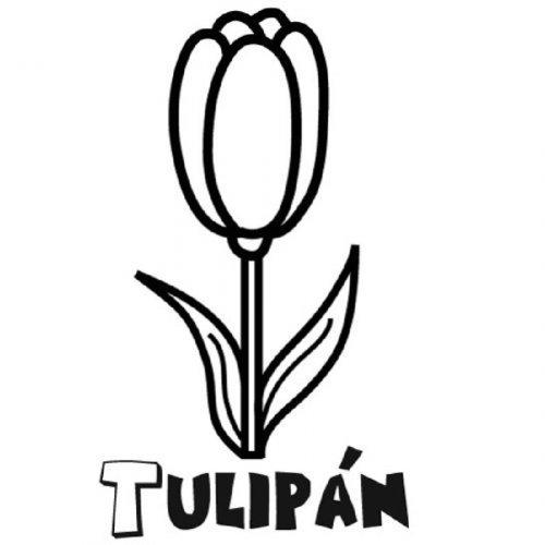 Dibujo para imprimir y colorear de un tulip n for Plantas ornamentales para colorear