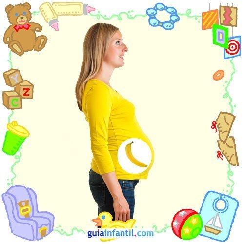 Tu bebé en con frutas y verduras. Quinto mes de embarazo