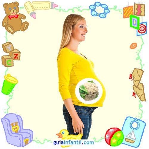 Tu bebé en con frutas y verduras. Séptimo mes de embarazo