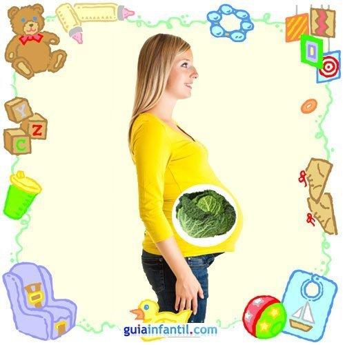 Tu bebé en con frutas y verduras. Octavo mes de embarazo