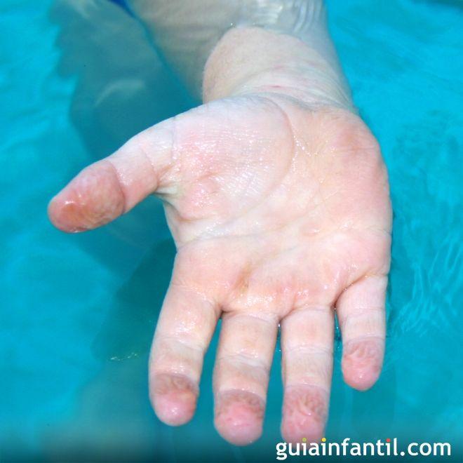 ¿Por qué se arrugan los dedos en el agua?