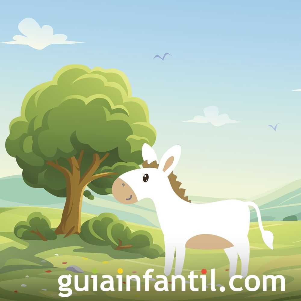 El burrito albino. Cuento sobre el respeto