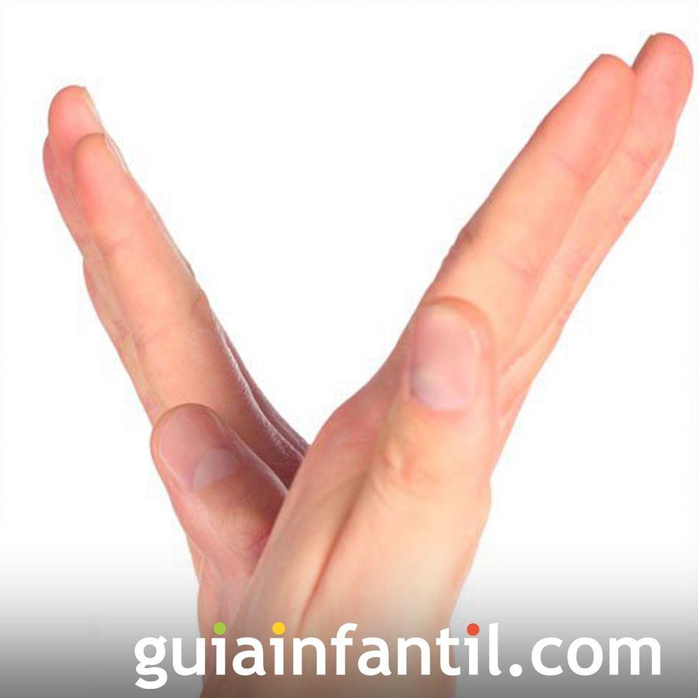 La letra V. Letra del alfabeto con las manos