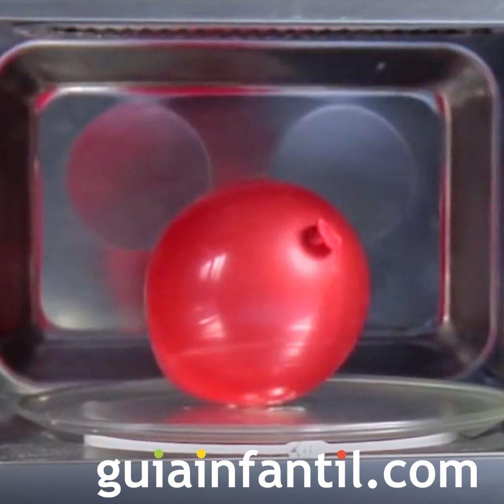 Experimento para inflar un globo en un microondas