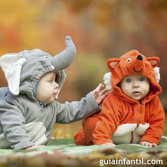 Disfrazados de animales fotos a beb s gemelos ideas - Cunas bonitas para bebes ...