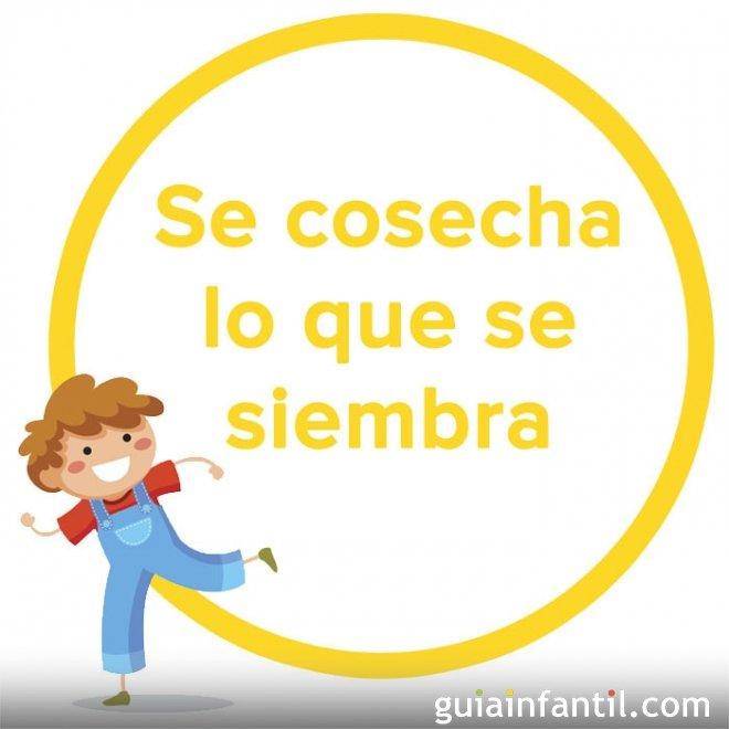 Se cosecha lo que se siembra. Refrán popular argentino para niños