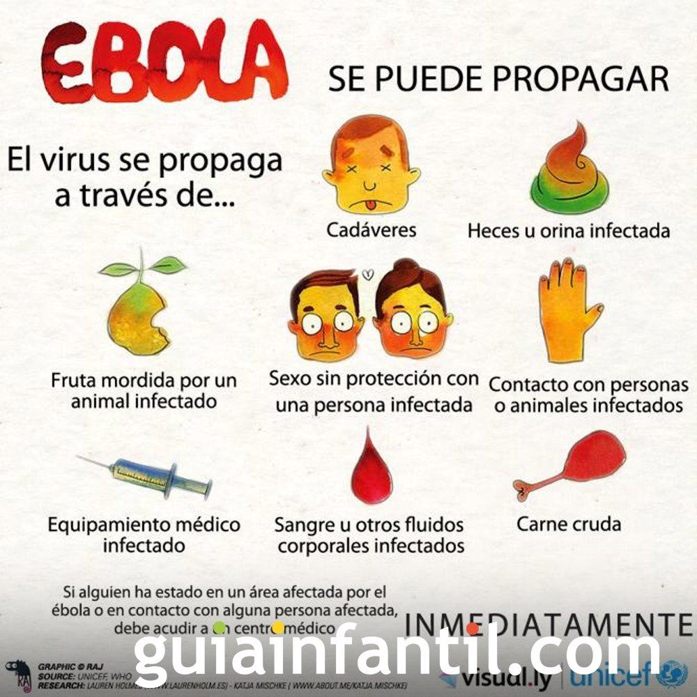 El contagio y cómo se propaga el ébola