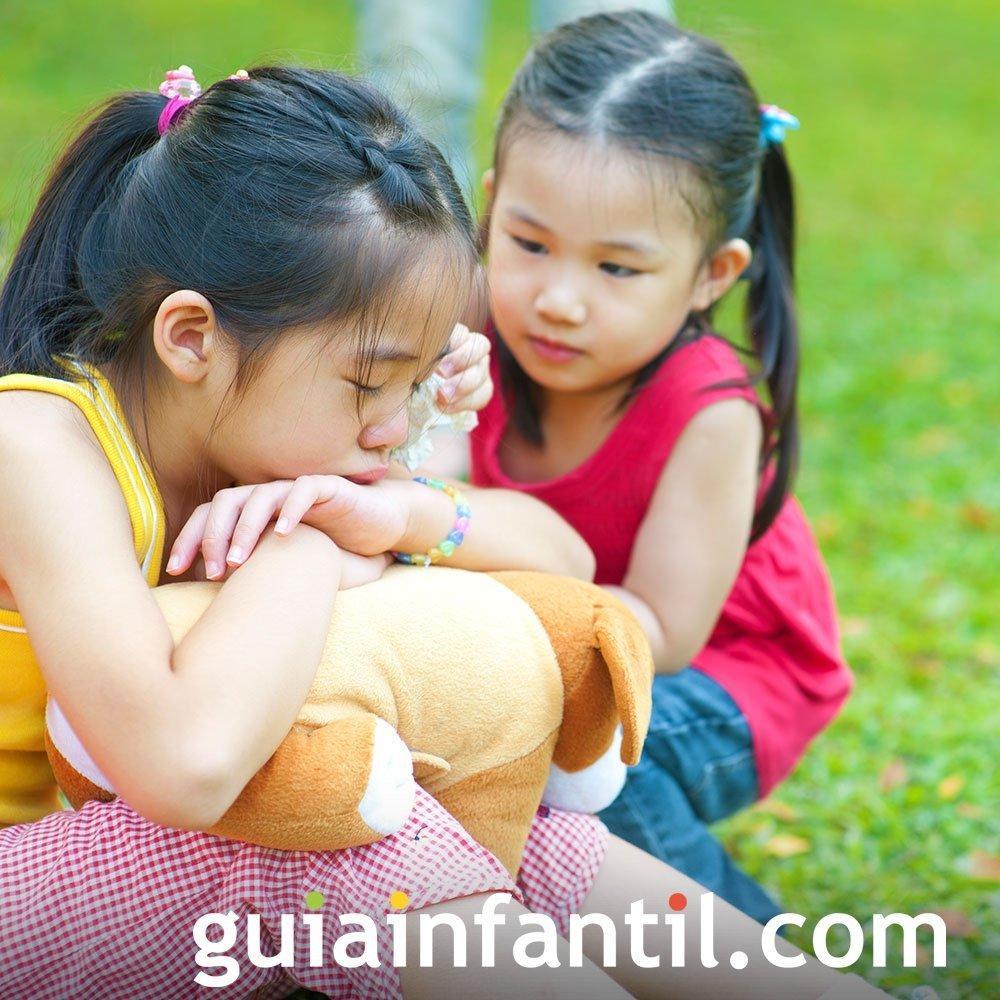 Un cuento infantil sobre la compasión