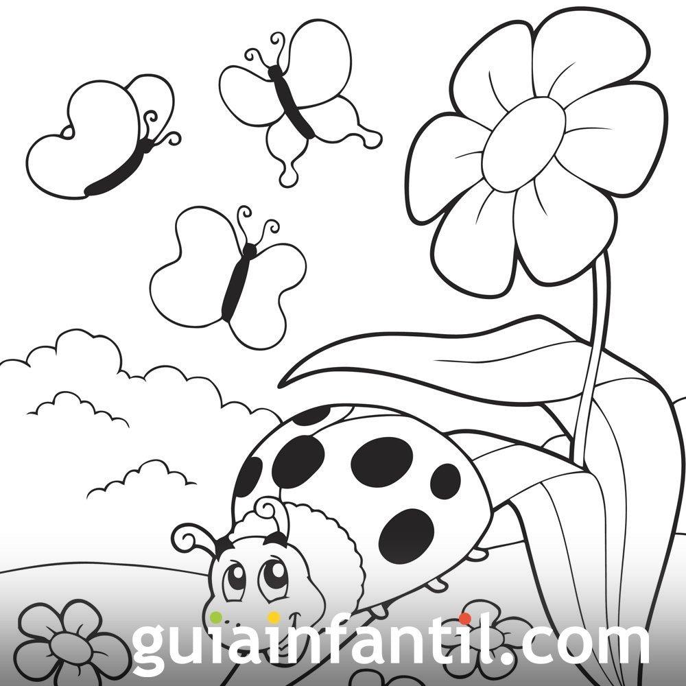 Dibujo De Mariposas Para Pintar