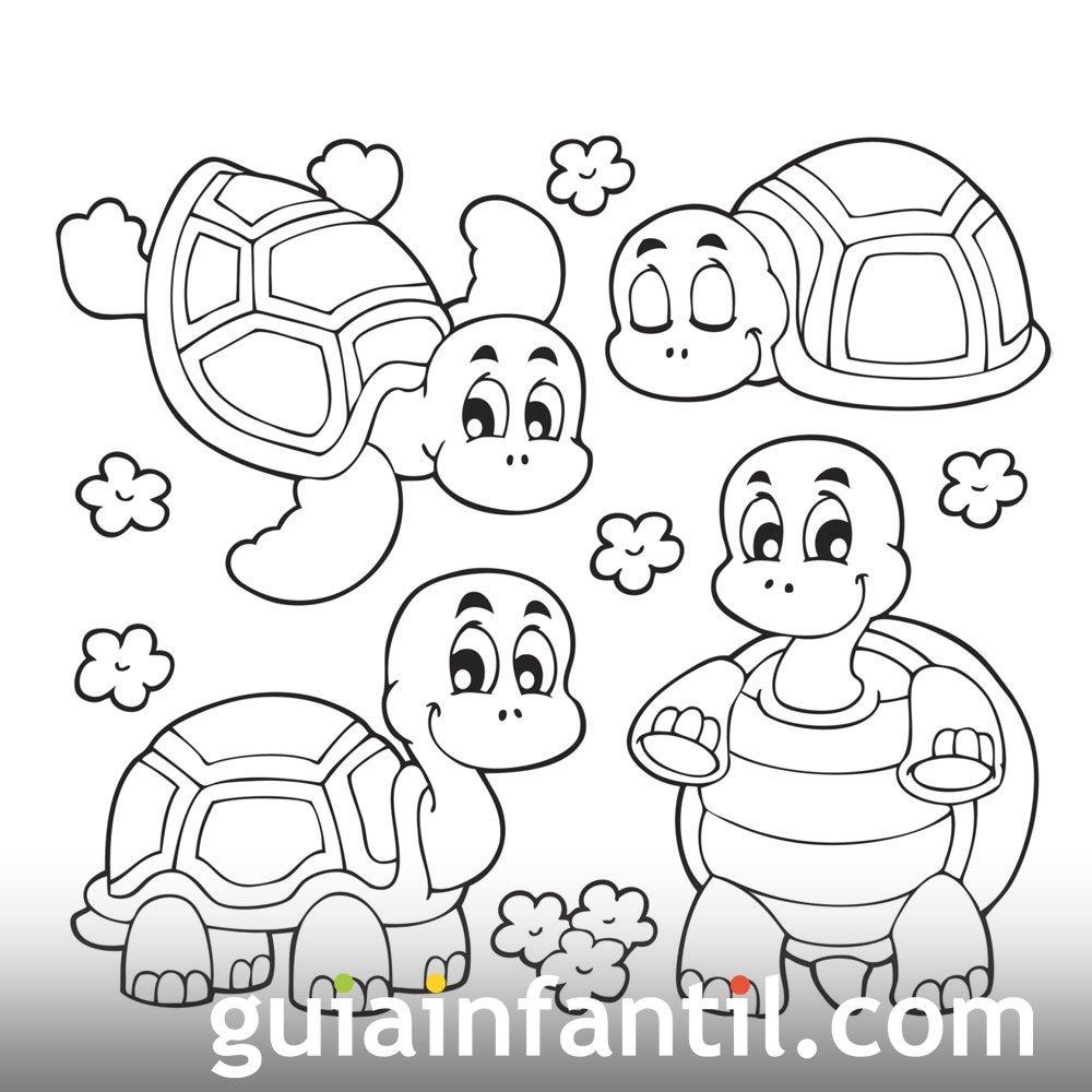 Cuatro simpáticas tortugas. Dibujo para imprimir