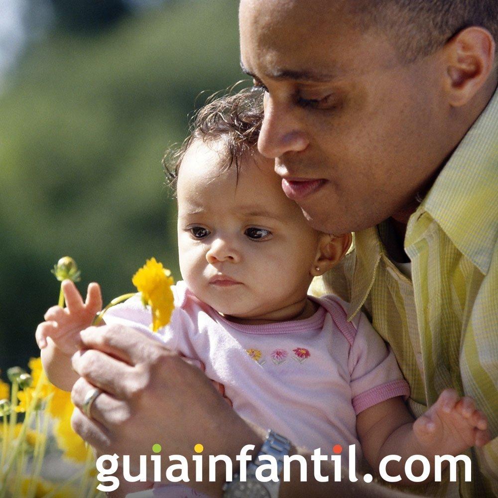 Familiarizar al niño con su entorno
