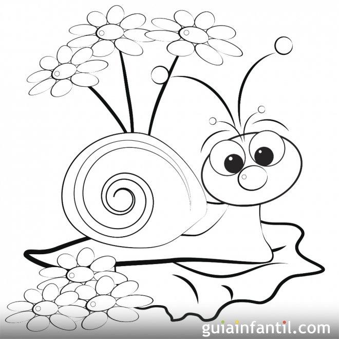 Dibujo de un caracol en primavera para colorear  Primavera