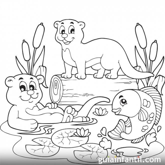 Dibujo De Animales De Río Para Colorear En Primavera