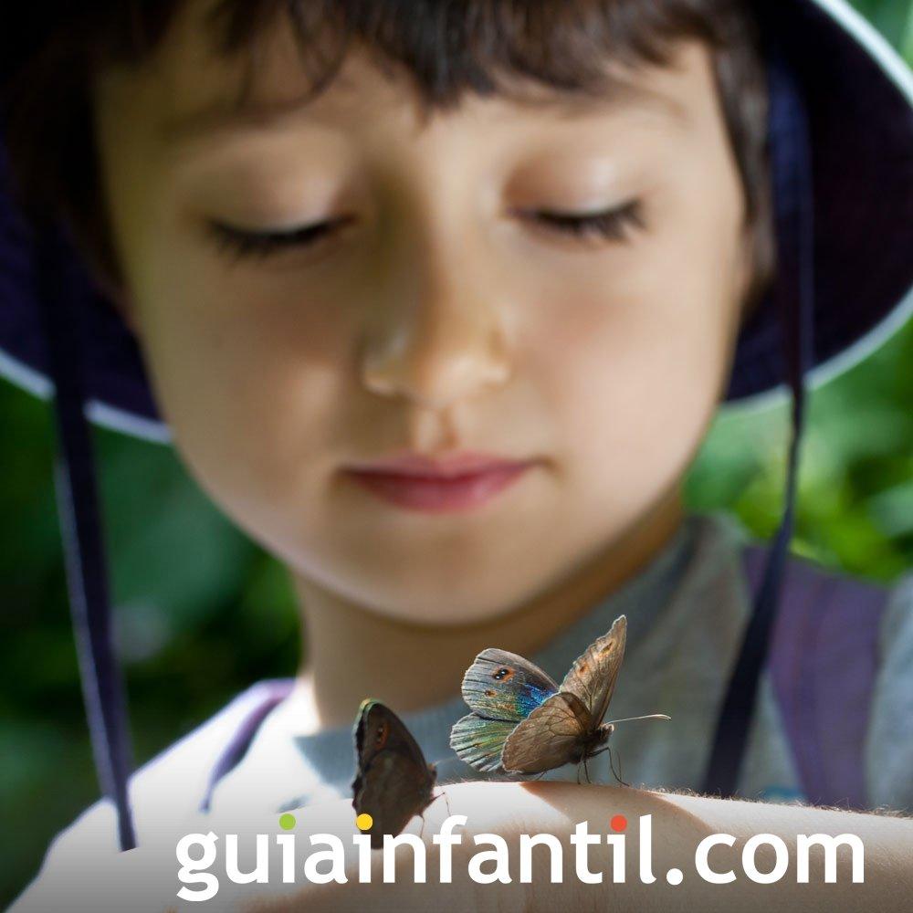 Acercar a los niños al mundo animal