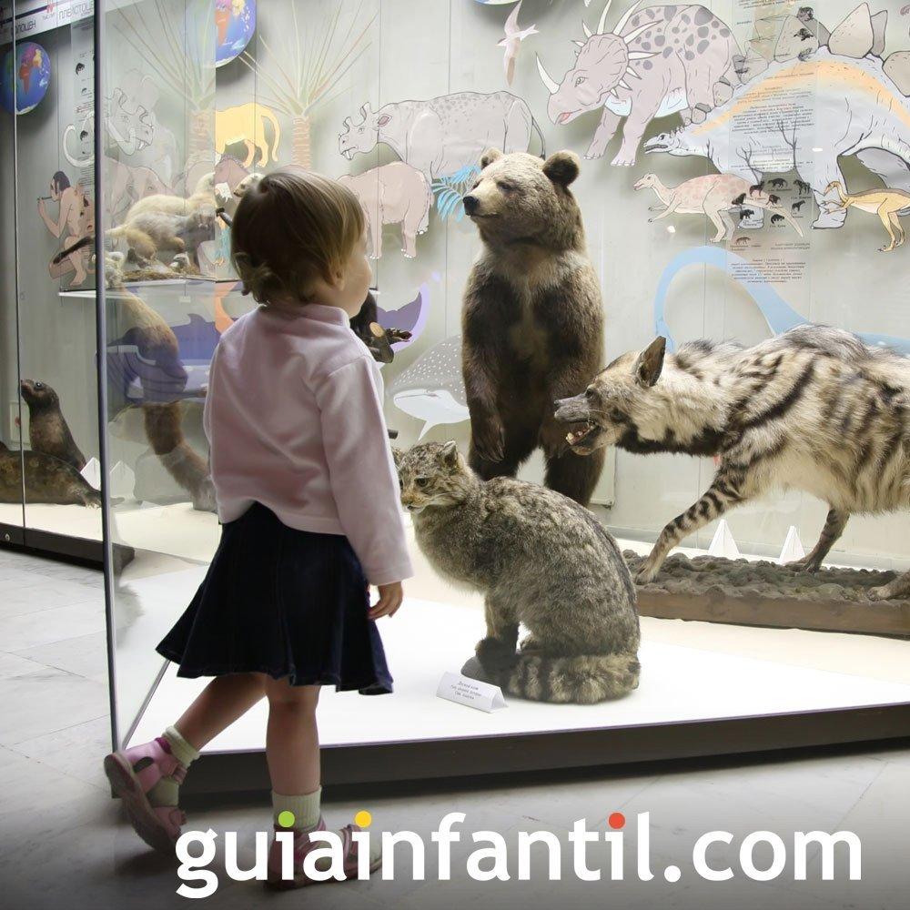 Visitar museos de ciencias con los niños