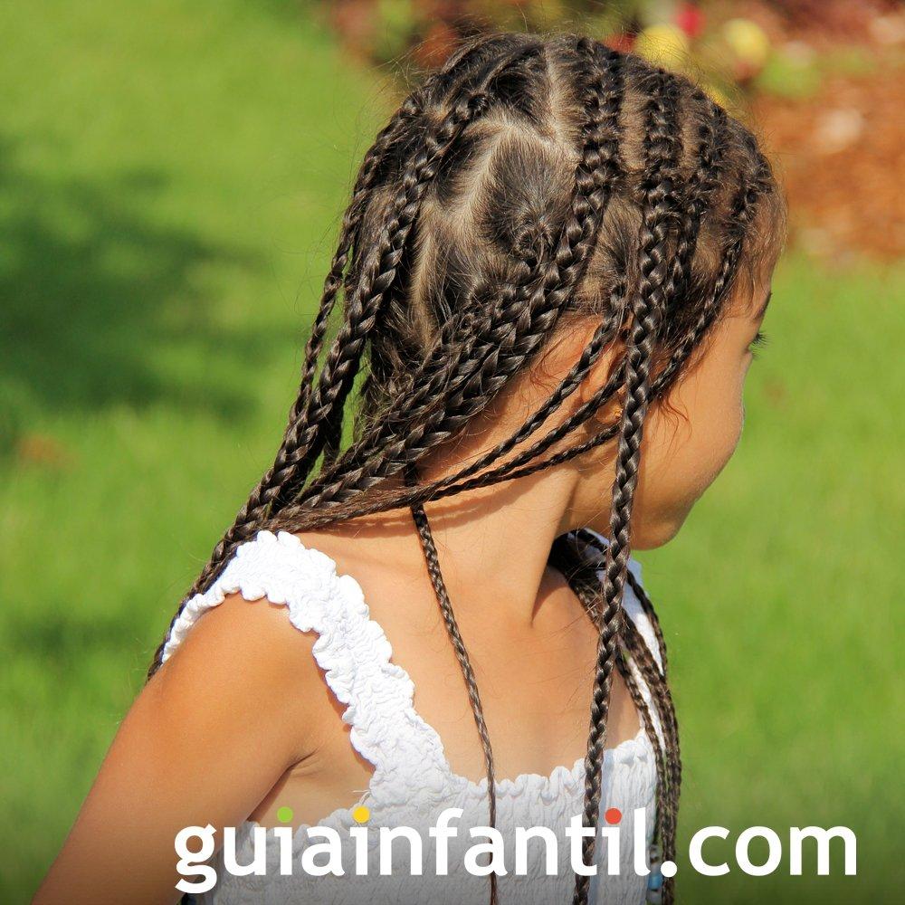 Peinado De Trenzas Finas Y Verticales Para Ninas
