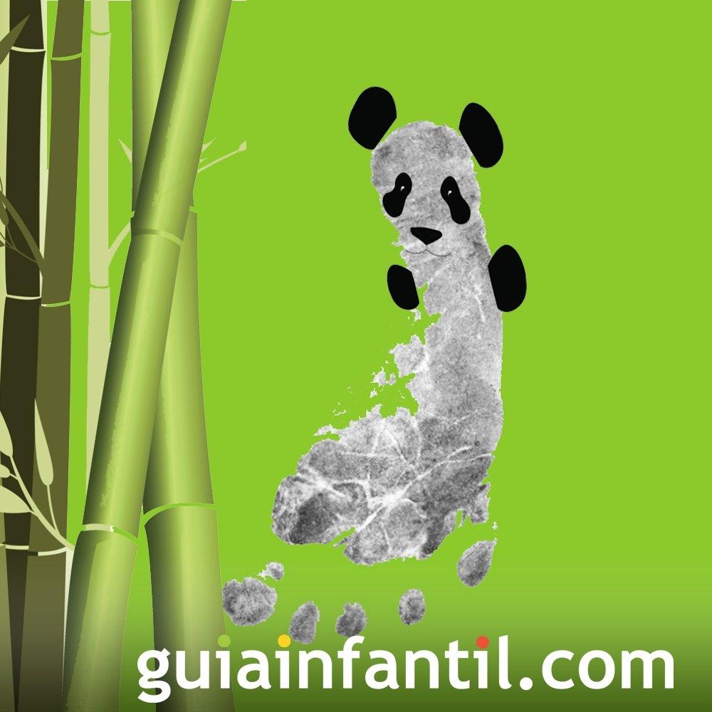 Oso panda con la huella del pie