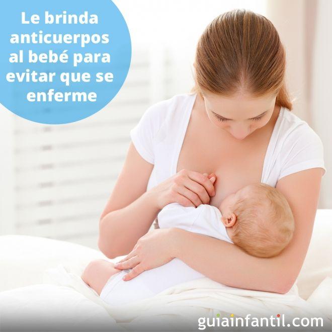 1. Le brinda anticuerpos al bebé