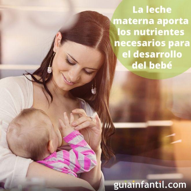 2. La leche materna aporta los nutrientes necesarios para el desarrollo del bebé