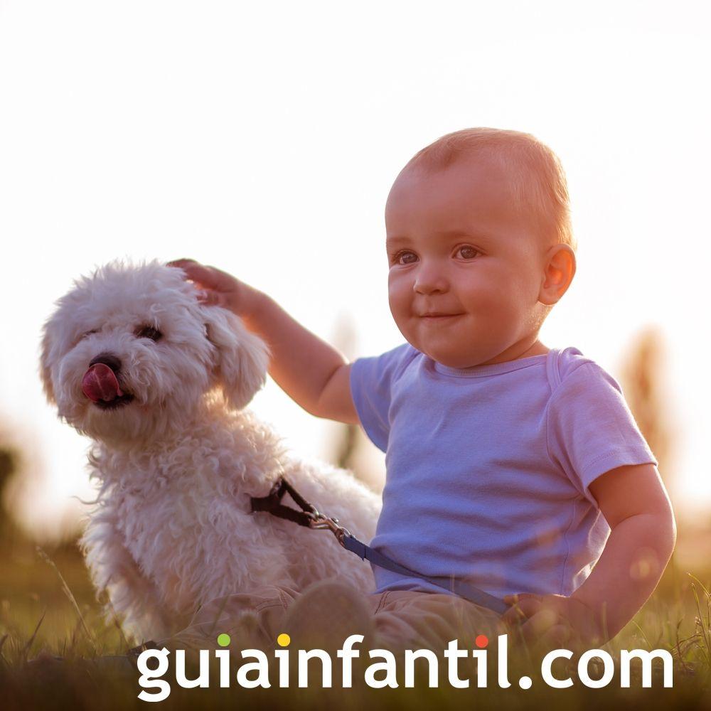 Un perrito y un bebé