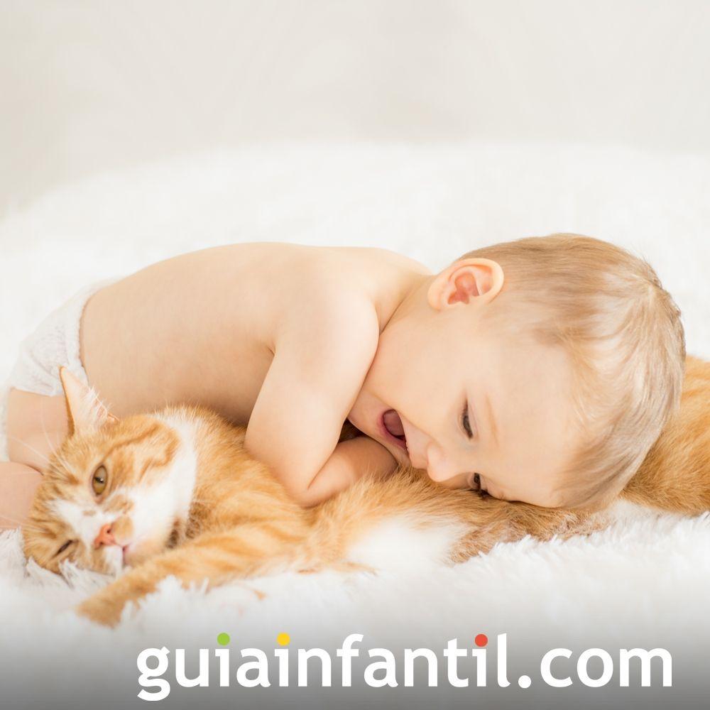 Los gatos también son amigos de los bebés