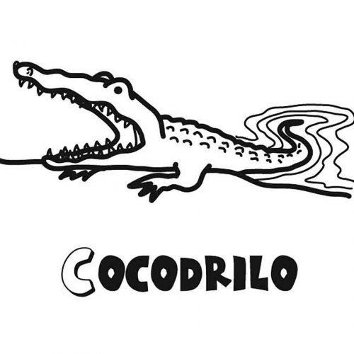 Dibujo para colorear de cocodrilo