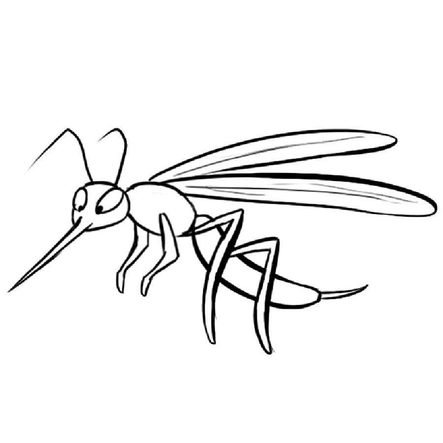 Dibujo de mosquito en el bosque para imprimir