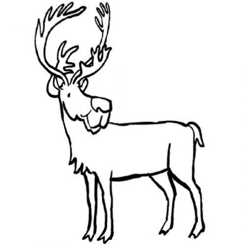 Dibujo de reno para colorear