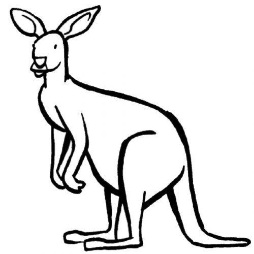 Dibujo de un exótico canguro para pintar - Dibujos para ...